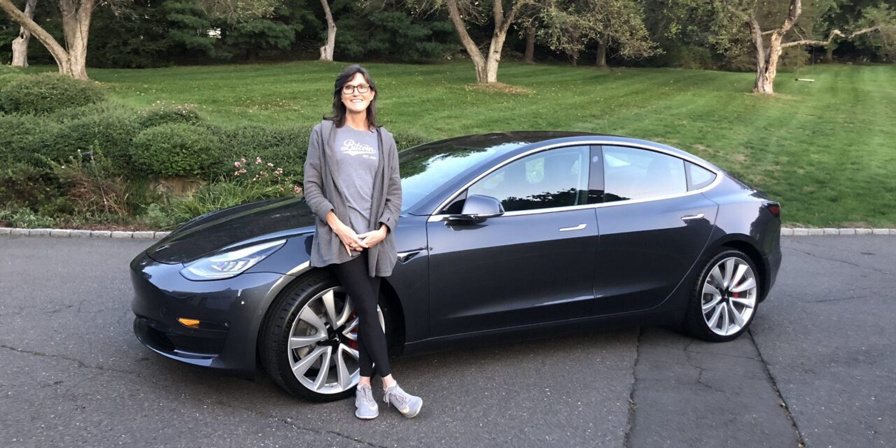 Tesla stock is expected to hit $3000 by 2025, according to Cathie Wood's Ark invest